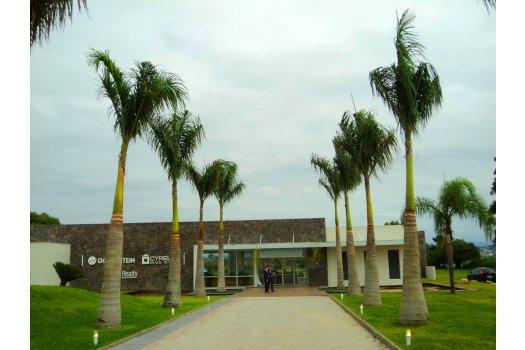 Paisagismo Boulevard Neoville - Goldsztien Cyrela - Florianópolis