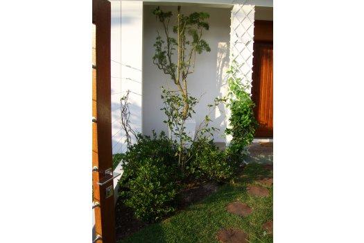 Paisagismo  Residência Santa Mônica  - Florianópolis